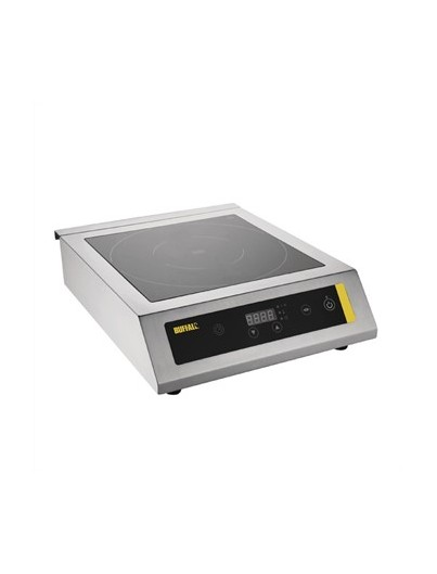 PLAQUE INDUCTION PROFESSIONNELLE 3KW